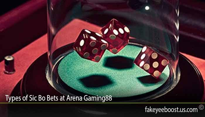 Types of Sic Bo Bets at Arena Gaming88